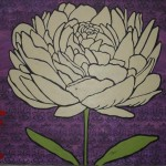 big white peony flower on purple background